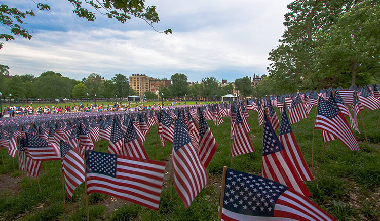 Flag photography by Milton Resident Brian Maclean, madtyphotography.com