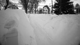 Shoveled snow paths in Milton
