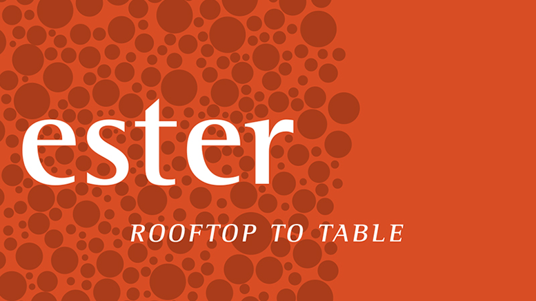 Ester: rooftop to table in Lower Mills, MA