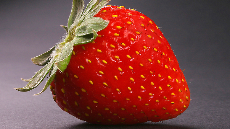 Strawberry festival to take place June 18