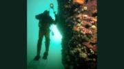 Underwater photographer Bob Michelson
