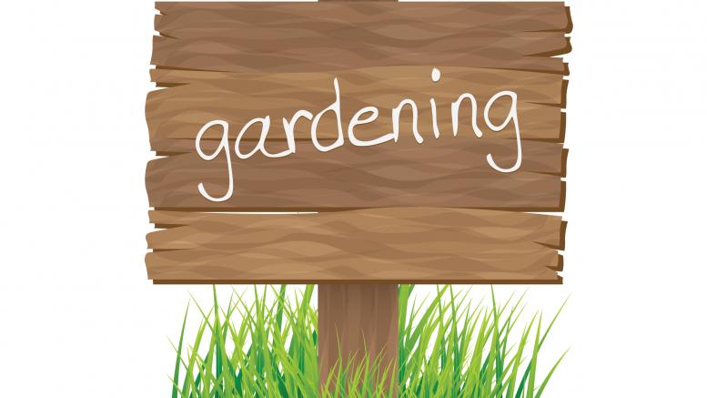 gardening / yard work