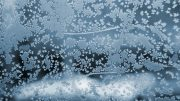 snowy frost holidays christmas winter pic