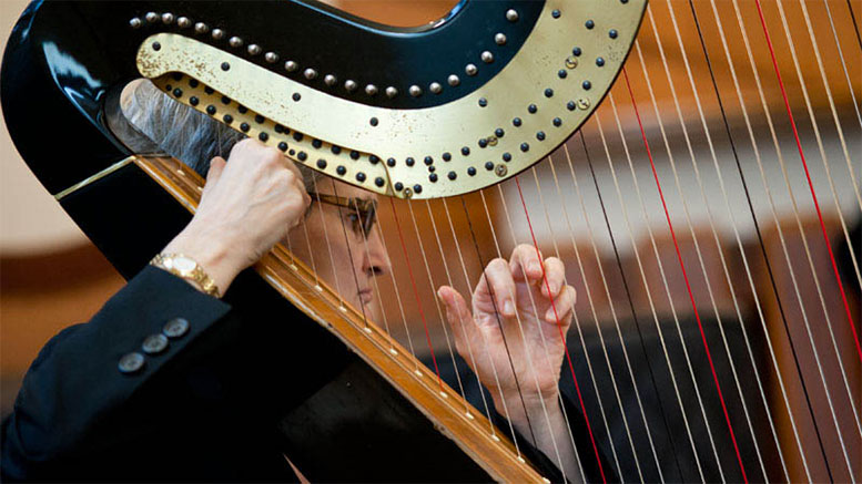 Parkway Orchestra harp