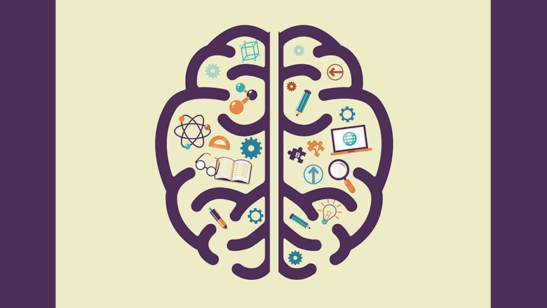 brain trivia