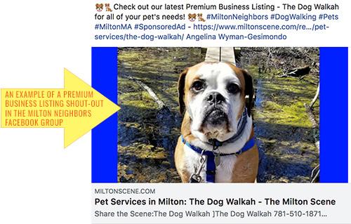 Milton Scene Premium Business listing shout-out