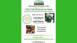 CSA fall shares