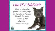 Comfy Cozy Pet Service MLK quote