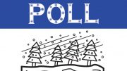 POLL: Do you contract with a business for snow removal? Or is it a DYI thing?