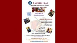 Registration for traditional Irish music classes