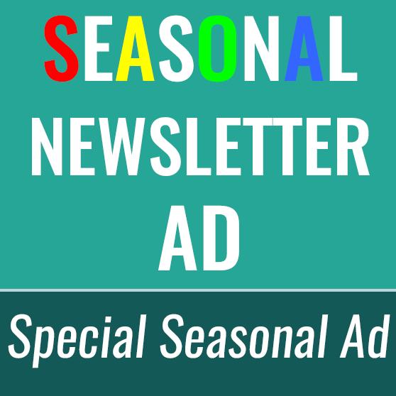 Seasonal Newsletter ad store image