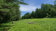 Mass Audubon Trails Open