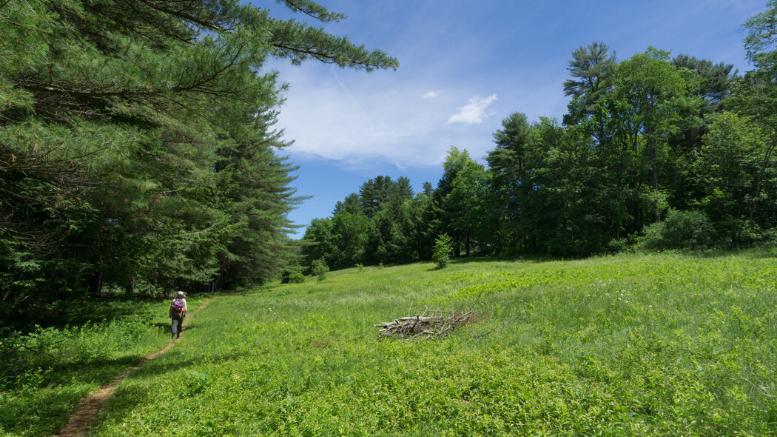 Mass Audubon Trails Open