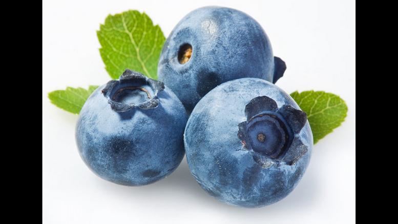 Summer Social Distancing Blueberry PYO