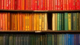 gorgeous books on shelf in order with color