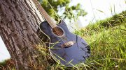 guitar in grass - music